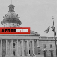 Bree Newsome 2 FreeBree1